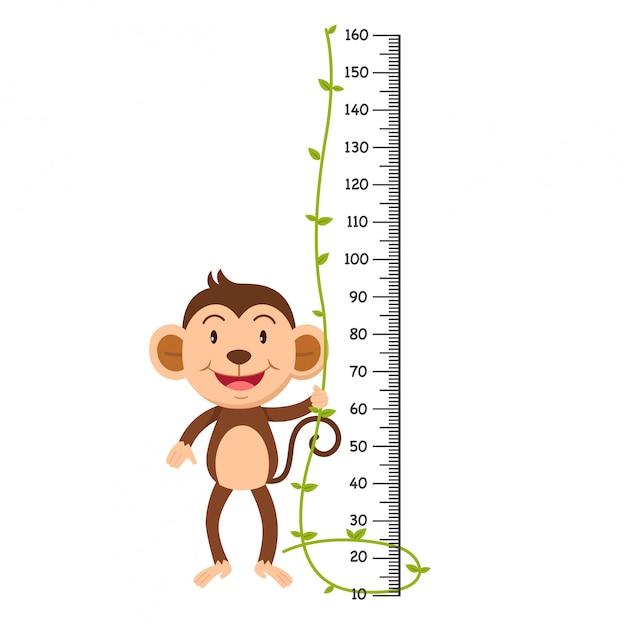 猿のイラストのメーターの壁。 Premiumベクター