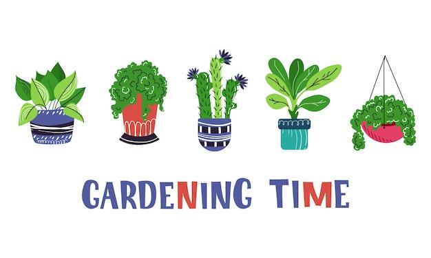 ホーム鉢植えの植物や花の大規模なセット Premiumベクター