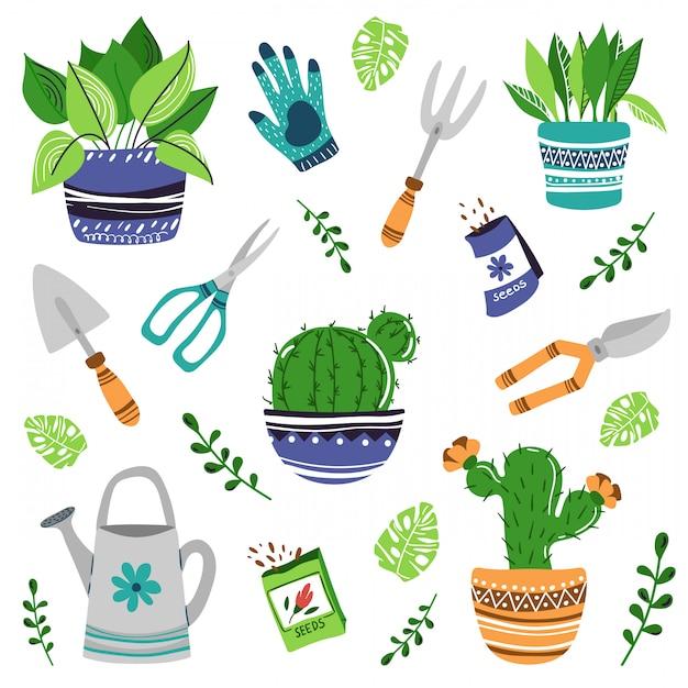家の植物や花のセット Premiumベクター