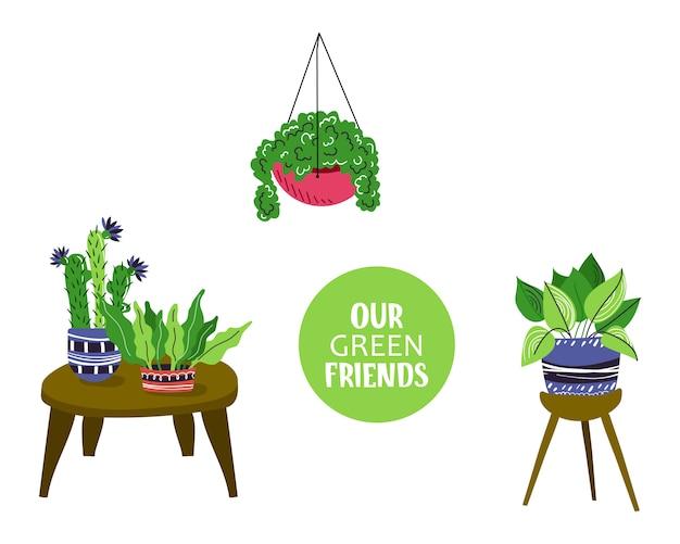 家の鉢植えの植物や花のコンポジション Premiumベクター