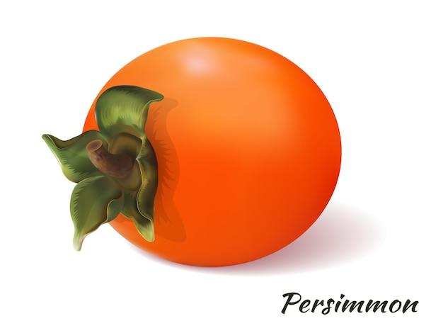 白い背景の上の柿 Premiumベクター
