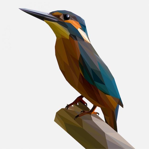 カワセミの鳥の低ポリ Premiumベクター