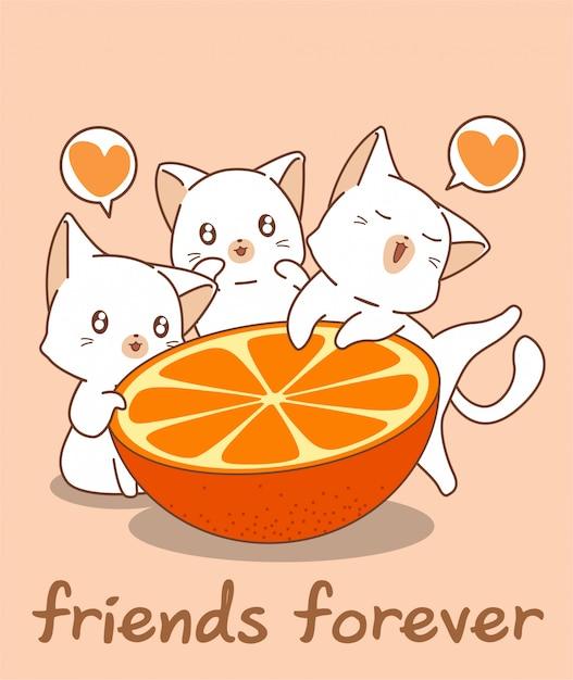 Очаровательные кошачьи персонажи и апельсин Premium векторы
