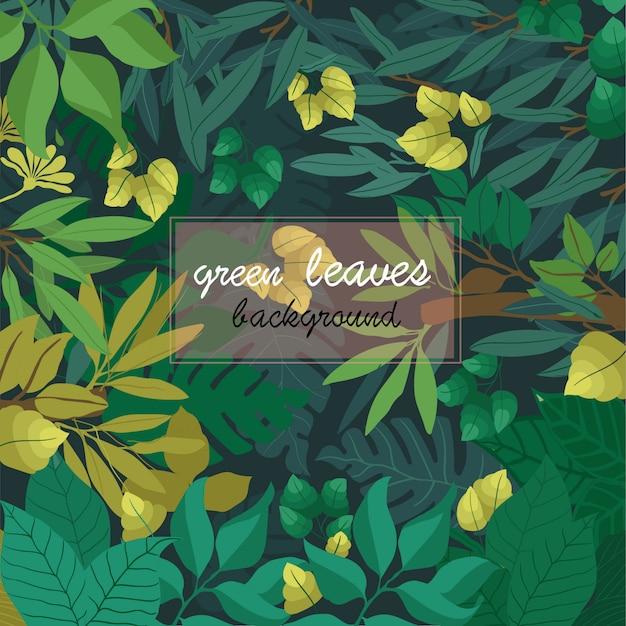 緑の葉の背景 Premiumベクター