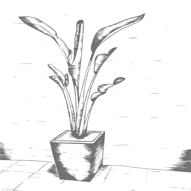植物イラストヴィンテージ Premiumベクター