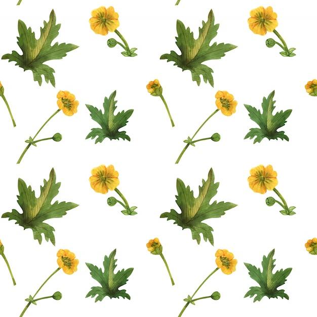 スコットランドのシームレスなパターンの野生植物 Premiumベクター