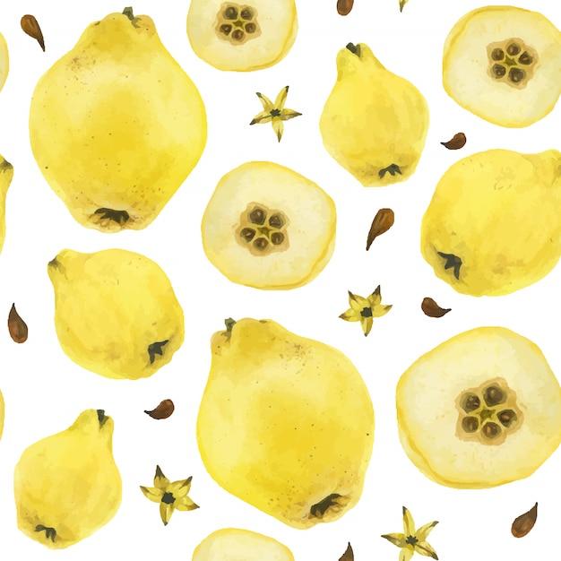 Желтая айва плоды бесшовные модели Premium векторы