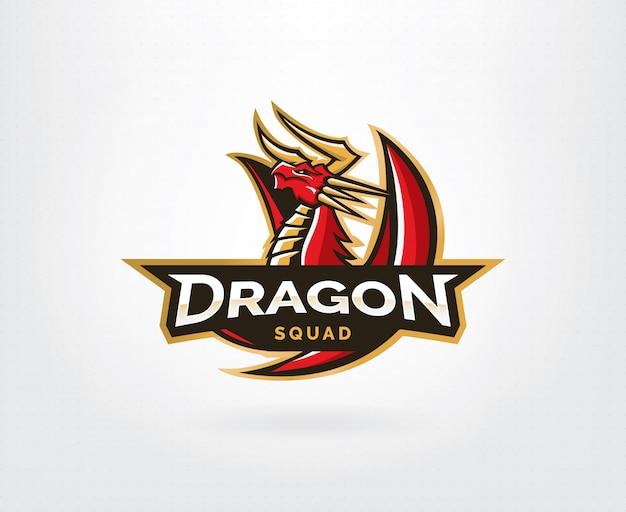Дракон векторный логотип Premium векторы