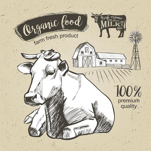 牛は牧草地の農場で横になっています。ビンテージグラフィック Premiumベクター