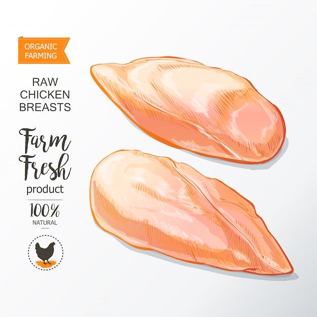 鶏の胸肉ベクトル Premiumベクター