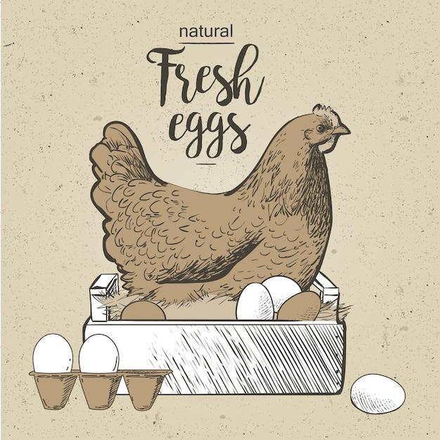 チキンと卵ビンテージスタイルのベクトル図 Premiumベクター