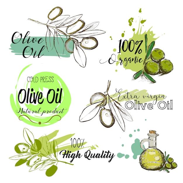 Набор рисованной этикетки и признаки оливкового масла. Premium векторы