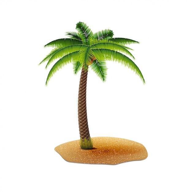 あなたの創造性のための白い背景で隔離のココヤシの木 Premiumベクター
