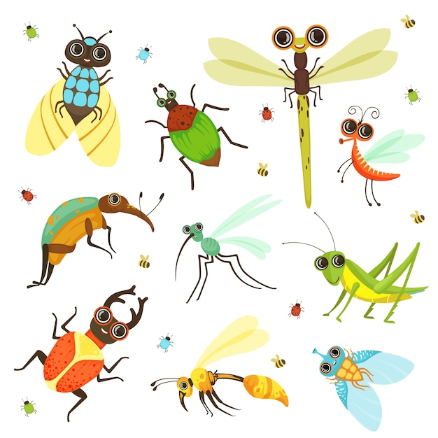 バグ、蝶、その他漫画スタイルの昆虫 Premiumベクター