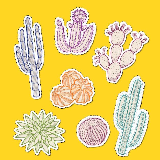 Набор рисованной наклейки пустынных кактусов Premium векторы