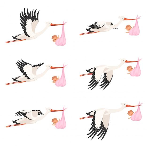 空飛ぶコウノトリのフレームアニメーション。鳥配達生まれたばかりの赤ちゃんを運ぶ漫画のキャラクターの分離 Premiumベクター