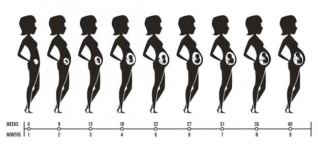 妊娠の段階。生まれたばかりの子供の女性の妊娠の三半期のインフォグラフィック写真と幸せなママのシルエット Premiumベクター