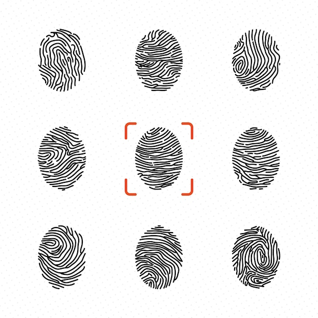 Набор индивидуальных отпечатков пальцев для идентификации личности. векторные иллюстрации Premium векторы