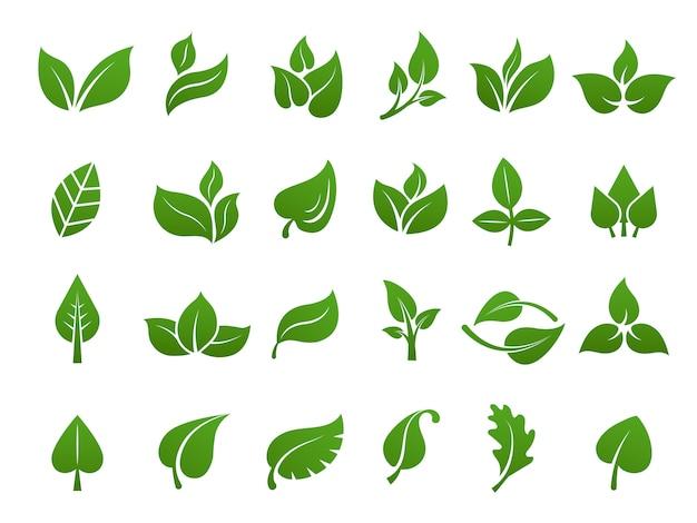 緑の葉のロゴ。植物自然エコガーデン様式化されたアイコンベクトル植物コレクション Premiumベクター
