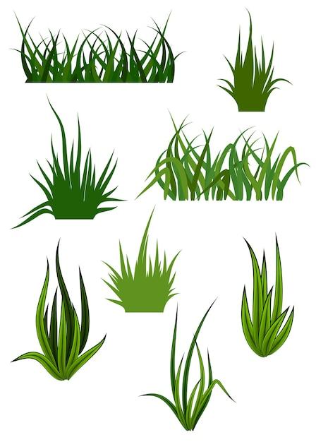 緑の草 Premiumベクター