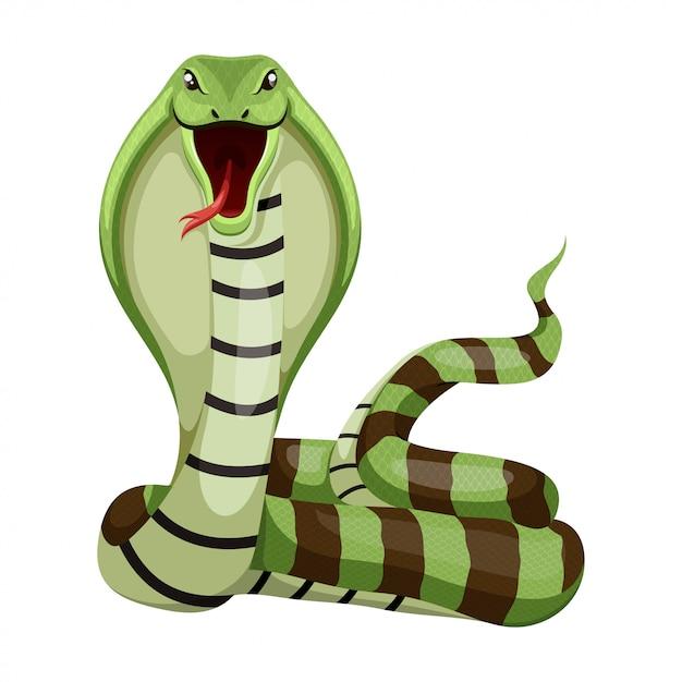 ヘビのベクトル図 Premiumベクター