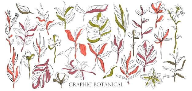 手描きセットスケッチスタイルの野生の花 Premiumベクター