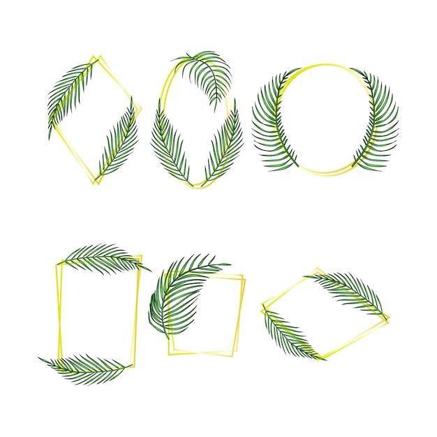 Набор рамок из тропических листьев, коллекция экзотических листьев пальм джунглей Premium векторы