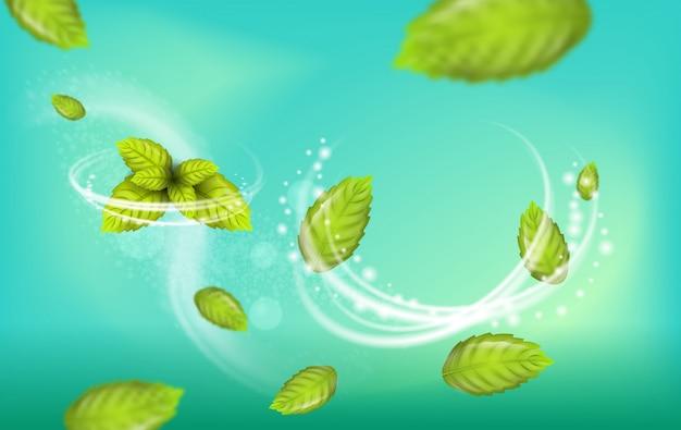 リアルなイラストフライングミントの葉のベクトル Premiumベクター