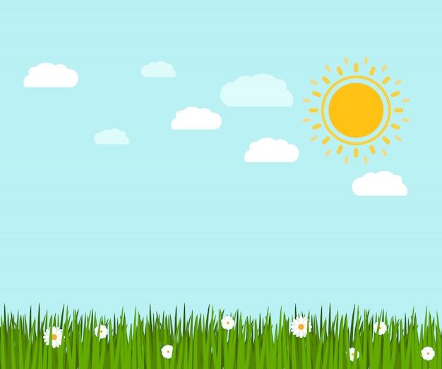 Весенняя зеленая трава и ромашка пейзаж Premium векторы
