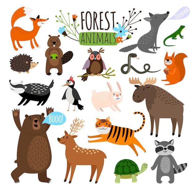 森の動物森のかわいい動物セットムースや鹿やアライグマ、キツネ、クマのような分離ベクトル図の分離 Premiumベクター