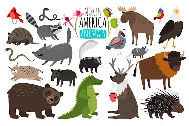 Североамериканские животные Premium векторы