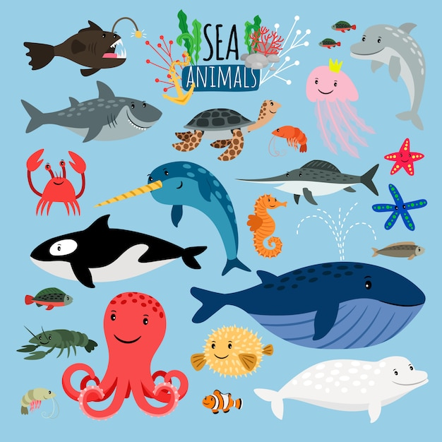 Морские животные Premium векторы