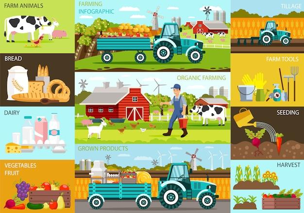有機農法インフォグラフィックおよび栽培製品 Premiumベクター