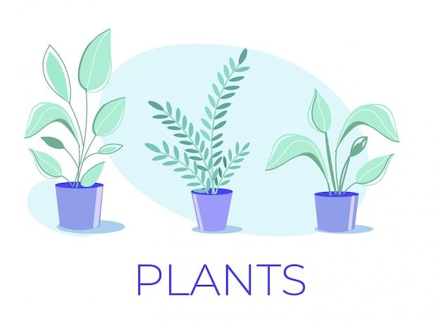 鉢植えの家の植物のコレクションと漫画のポスター Premiumベクター