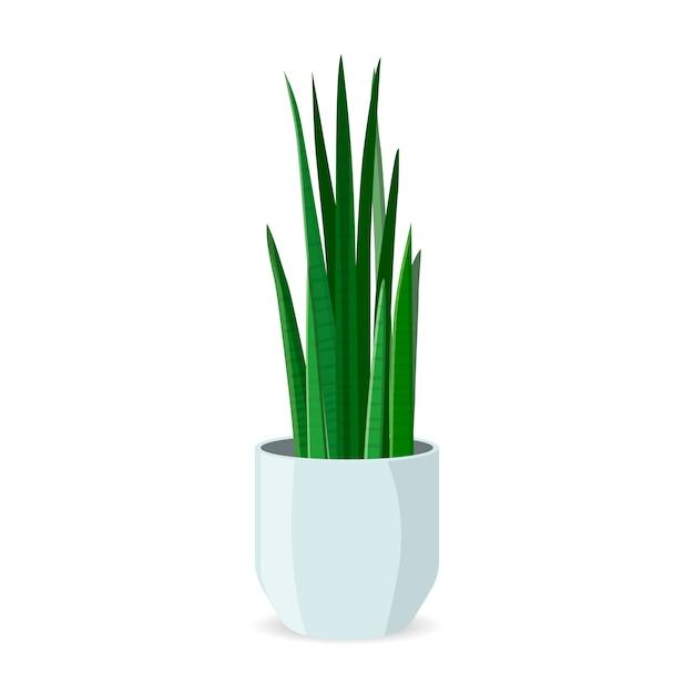 分離されたポットフラットの家の植物。室内装飾 Premiumベクター
