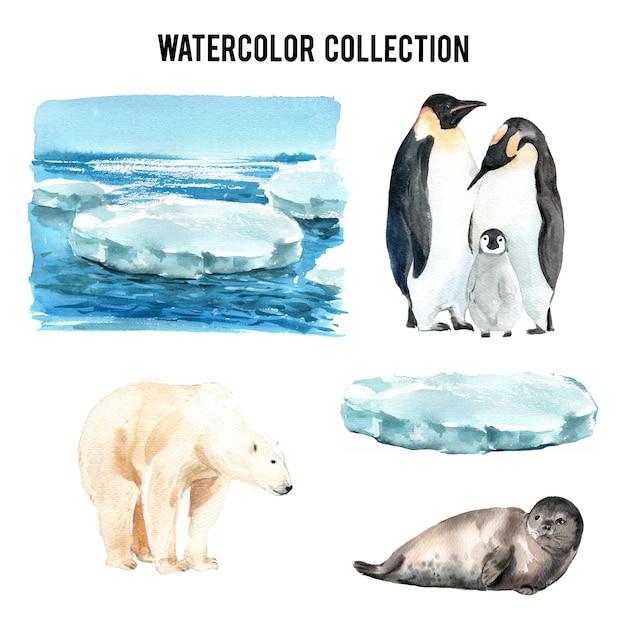Набор акварели глобального потепления, рисованной иллюстрации элементов изолированы Бесплатные векторы