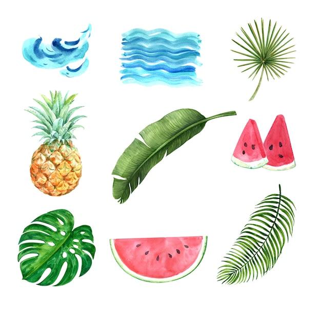 熱帯植物水彩創造的な要素、デザインベクトルイラスト。 無料ベクター
