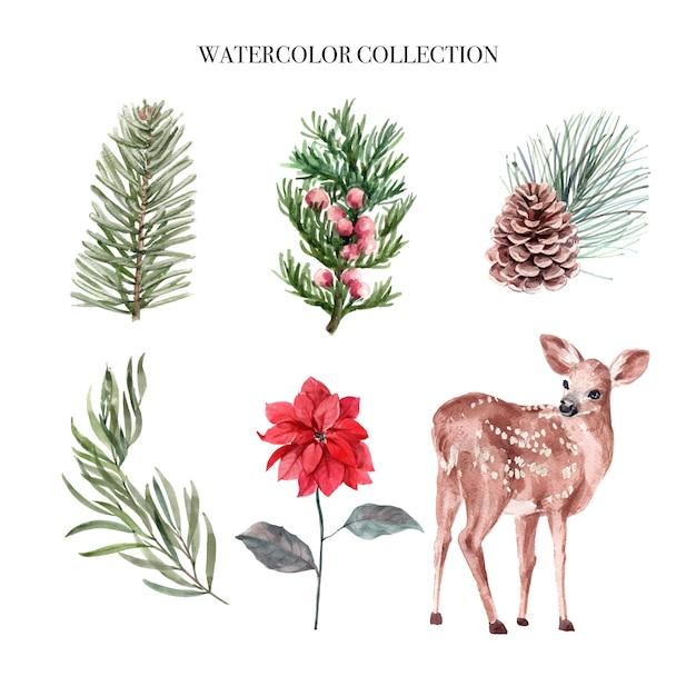 Акварельные зимние украшения иллюстрации, состоящий из растений и оленей. Бесплатные векторы