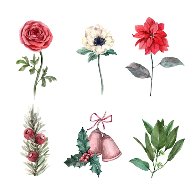 様々な花から成る白の水彩冬の装飾図。 無料ベクター
