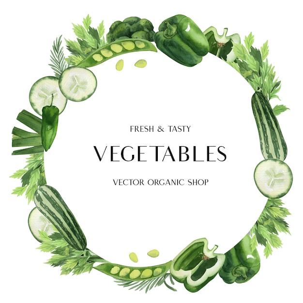 Зеленые овощи акварель плакат органическое меню идея фермы, здоровый органический дизайн Бесплатные векторы