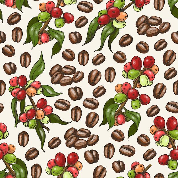 Векторный рисунок с кофе Premium векторы