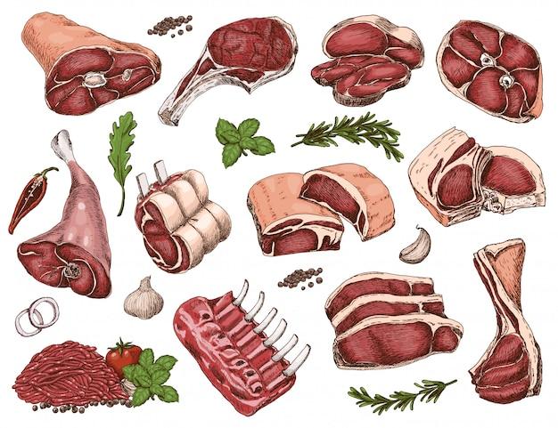 さまざまな色の肉のベクトルを設定 Premiumベクター