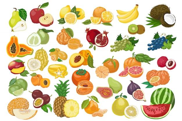 Большая коллекция изолированных фруктов Premium векторы