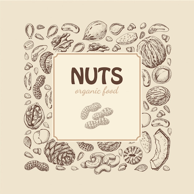 Орехи и семена фон Premium векторы
