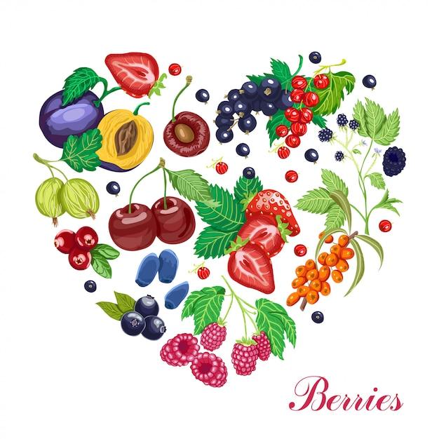 様々な果実から成っているベクトル心 Premiumベクター