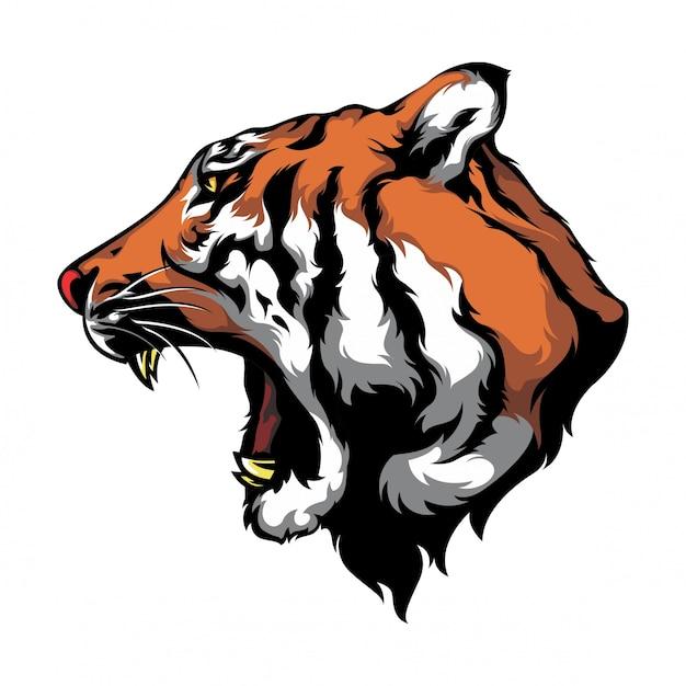 Взгляд головы вектора тигра бортовой Premium векторы