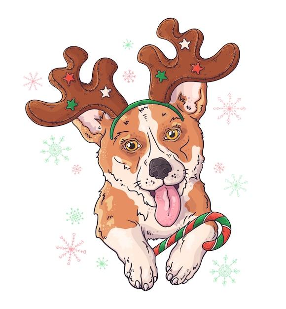 クリスマスアクセサリーでコーギー犬の手描き Premiumベクター