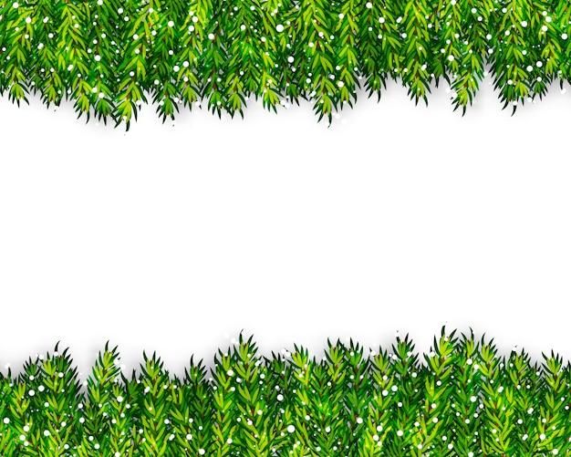 クリスマスツリーの枝 Premiumベクター