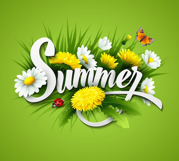 草、タンポポ、ヒナギクと新鮮な夏の背景 Premiumベクター