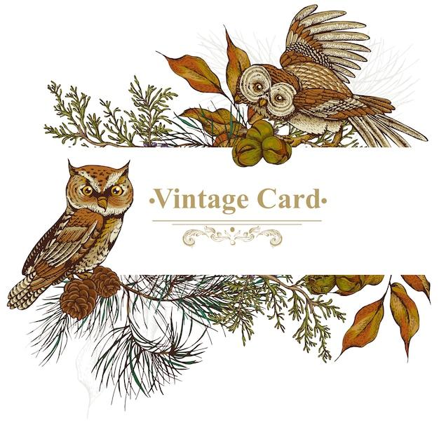 フクロウ、トウヒ、モミの木の森のグリーティングカード Premiumベクター